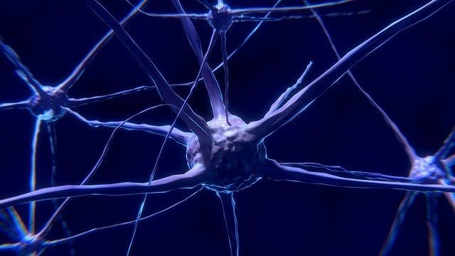 Rehabilitación visual tras un daño cerebral adquirido